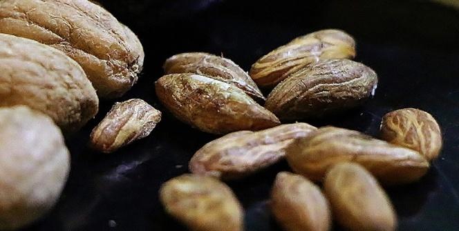 Zeytin ağacının her gün bir sırrı çözülüyor! Bu ürünün kilosu 5 bin euro