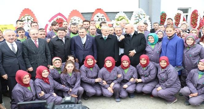 Bakan Eroğlu defne yaprağı fabrikasının açılışını yaptı