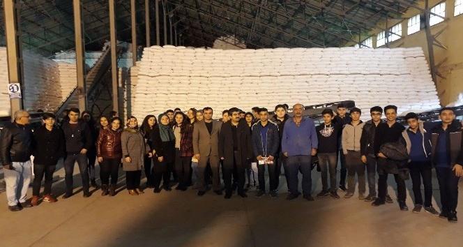 Öğrenciler Şeker Fabrikasını gezdi