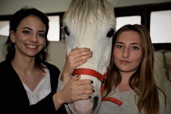 Üniversiteli kızlar, ojeli ellerle atlara nal çakıyor