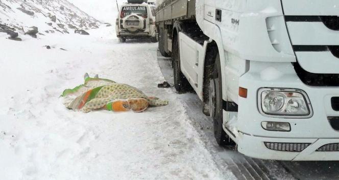 Kar ve tipi dolayısıyla kapanan yolda sürücü kalp krizi geçirerek öldü