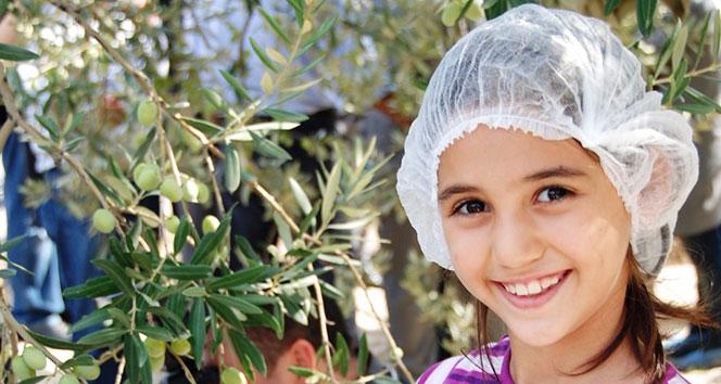 Zeytincilik sektörü Ortadoğu pazarında atak yaptı