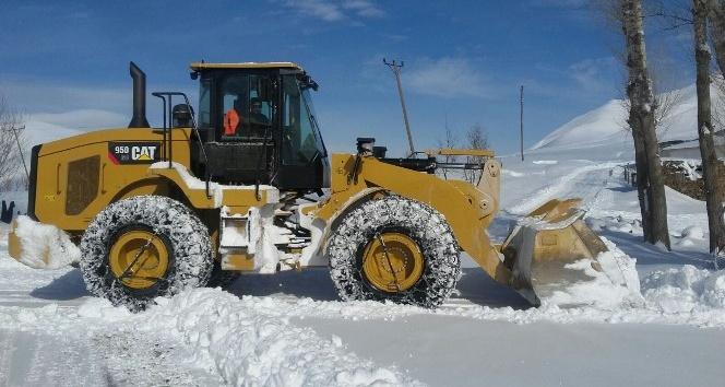 Gürpınar'da karla mücadele çalışması