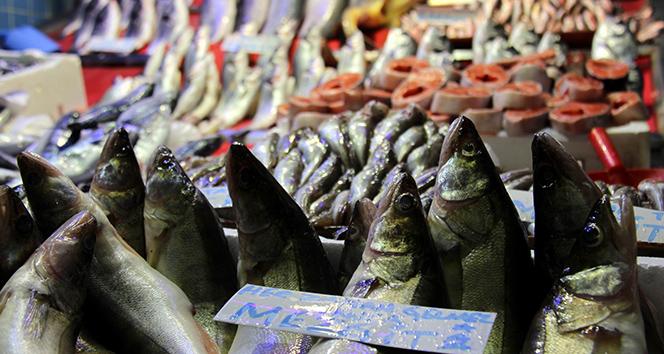 Balık fiyatları el yakıyor |Fiyatı dört kat arttı