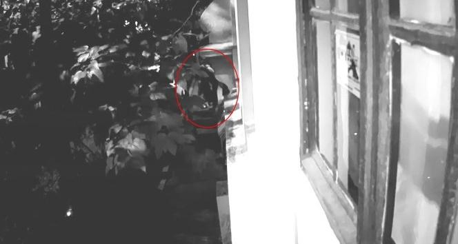 (Özel) Evden çaldıkları montları dışarıda yere serip seçtiler