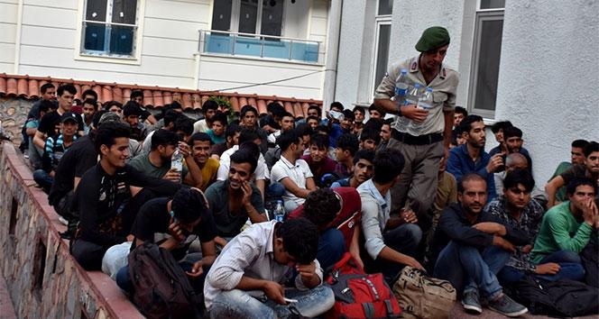 Tosyada göçmen kaçakçılığından 2 kişiye ceza yağdı