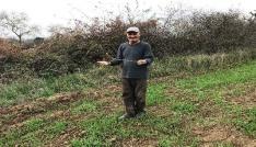 (Özel Haber) Çatal çubukla yer altı su kaynaklarını buluyor