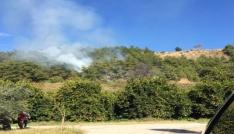 Alanyada orman yangını korkuttu