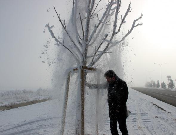 Erzurum'da düşen kırağı izlenmeye değer manzaralar oluşturdu