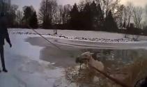 Atı donmuş göletten böyle kurtardılar