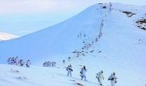 Mehmetçik karlı dağları didik didik aradı!