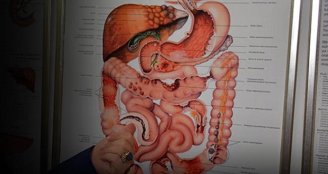 Hemoroid (Basur) nedir? Hemoroid nasıl geçer? Basur tedavi yöntemleri neler?