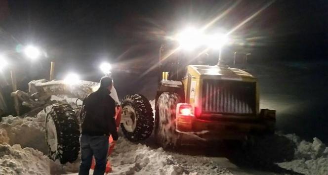 Kar ve tipi Doğu Anadolu'da 400'e yakın köy yolunu ulaşıma kapattı