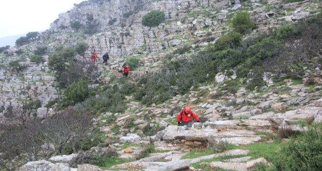 Dağda mahsur kalan keçiler için seferber oldular