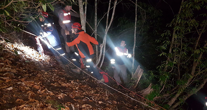 Kestiği ağaç üzerine devrilen şahıs hayatını kaybetti