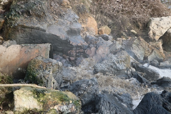Sakarya Nehri'ne akan kimyasal atık nehri siyaha bürüdü