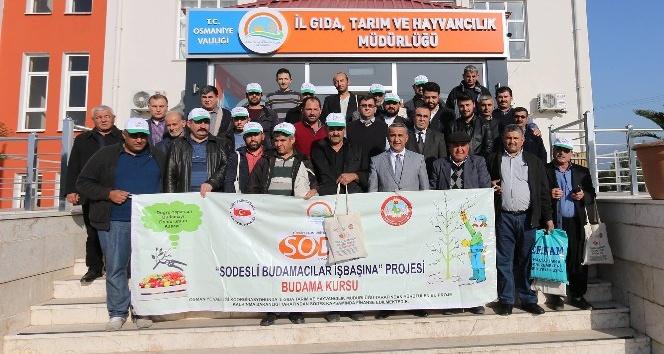 Osmaniye'de meyve ağaçlarında budama kursunun ikincisi tamamlandı