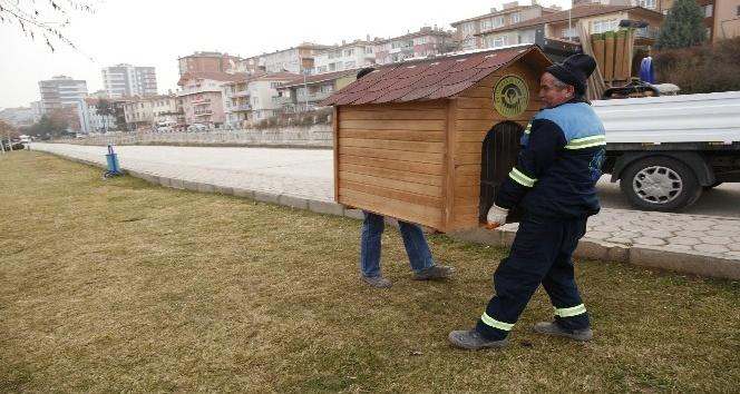 Sokaktaki dostların evleri çoğalıyor
