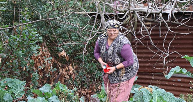 Bahçesinde yüzlerce çakmak gaz tüpü olan babaannenin feryadı