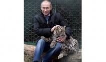 Putin'in leoparı ölü bulundu