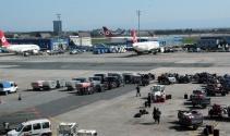 Atatürk Havalimanında uçuşlara köpek engeli