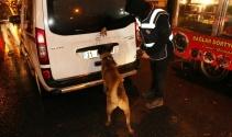 Diyarbakırda 600 polis ve dedektör köpeklerle asayiş uygulaması