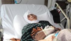Demokrasi Nöbetine eşeği ile katılan Emine Nine hastanede tedavi altında