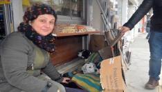Esnaftan sokak hayvanlarına battaniye