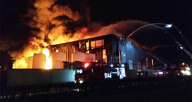 Kocaelinde parfüm fabrikasında büyük yangın