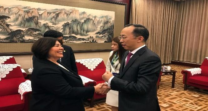 DHMİ Genel Müdürü Ocak, Çinlilere İstanbul'un yeni havalimanını anlattı