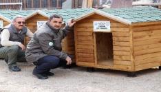 Gümüşhanede sokak hayvanlarına beş yıldızlı kulübe yapıldı