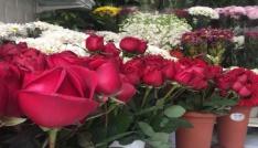 Sevgililer Gününde çiçekçiler internetten satışından şikayetçi