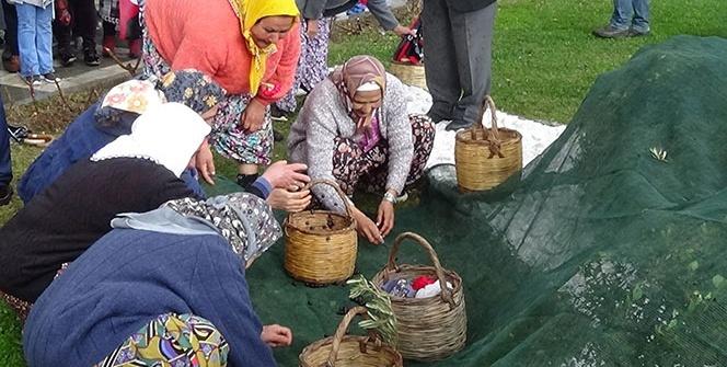 Yüzlerce yıllık gelenek Meci