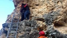 Ulubey Kanyonundaki kayalıklarda mahsur kalan genci AFAD kurtardı