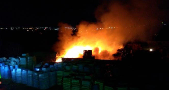 Kocaelide palet fabrikası alev alev yandı