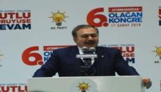 Bakan Eroğlu, AK Parti İl Kongresinde konuştu: