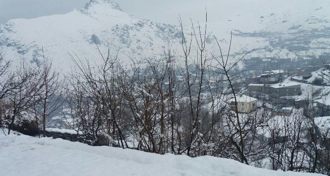 Hakkaride kar yağışı hayatı olumsuz etkiledi