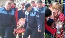 Yaralı ineği kurtarıp sedye ile tedaviye götürdüler