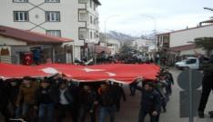 Narmanda Zeytin Dalı Harekatına destek yürüyüşü
