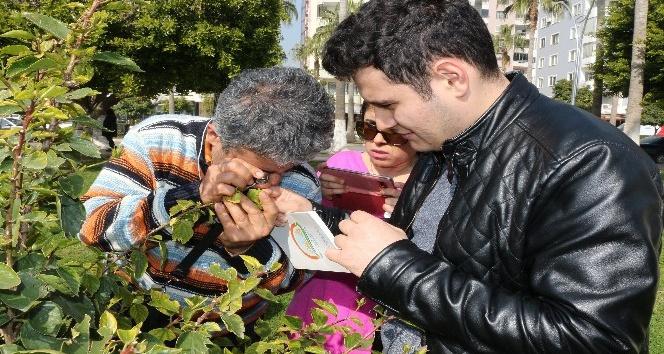 Mersin Büyükşehir Belediyesinden biyolojik mücadele