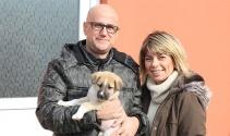 Şans köpeği 700 kilometre götürüp sağlığına kavuşturdular