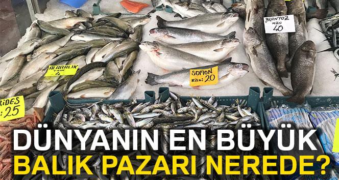 Dünyanın en büyük balık pazarı nerede ?