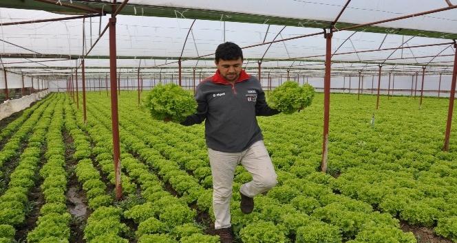 Zonguldak'ta mevsimlik işçilerin günlük ücreti açıklandı