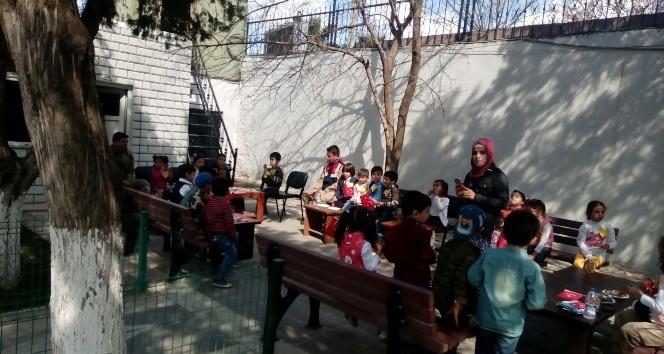 Minik Öğrencilerden Jandarmaya Zeytin Dalı Ziyareti