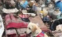 Bitlis'te terör örgütüne ait 3 sığınak imha edildi