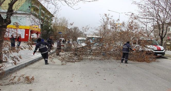 Erzurum'da şiddetli rüzgar hayatı adeta felç etti