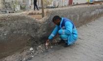 Temizlik işçisi okul yoluna tuzaklanmış bomba buldu