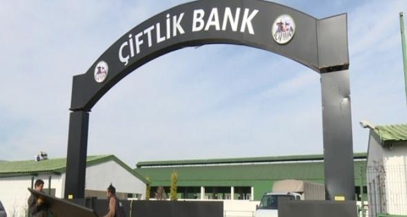 Çiftlik Bank soruşturması kapsamında 3 şirkete kayyum atandı