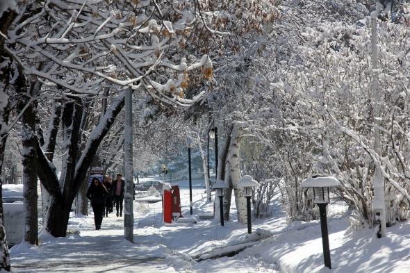 Doğu Anadolu Bölgesi adeta buz kesti! Eksi 10'u gördüler...