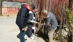 Bayburtta fide, fidan ve süs bitkileri satış yeri denetimleri yapıldı